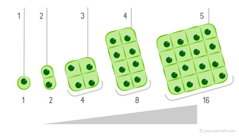 Increasing pattern by the example of cell division